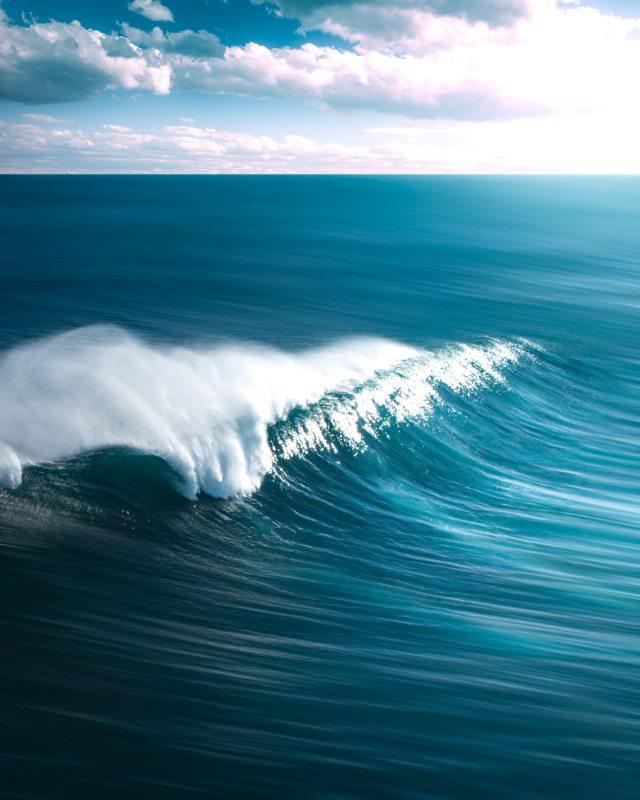 JJ Law Wave